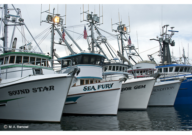 Gig Harbor Fleet